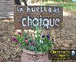 Imagenes Huella del Choique - Claromeco Alquileres - Dunamar Alquileres